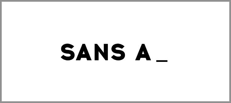 Sans A : «Rendre visible les invisibles»